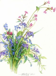 it's time to watercolors Anne Marie Patry-Belluteau. Discussion on LiveInternet - Russian Service Online Diaries Watercolor And Ink, Watercolor Flowers, Watercolor Paintings, Vintage Botanical Prints, Botanical Drawings, Art Floral, Botanical Flowers, Botanical Art, Impressions Botaniques