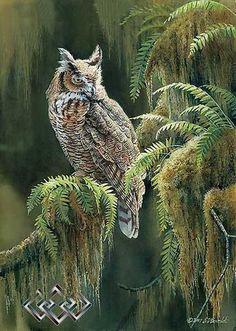 Owl Art, Bird Art, Owl Wallpaper Iphone, Owl Graphic, Scratchboard Art, Owl Illustration, Owl Pictures, Nature Artists, Great Horned Owl