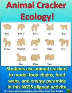 This activity proceeds as First, students complete a matching task using ecology Then students explore ecological levels of organization (using the Then students create a food web/food chain using the Finally, students learn about the energy pyramid usi… Science Resources, Science Education, Science Activities, Forensic Science, Higher Education, Science Ideas, Food Chain Activities, Biology Lessons, Science Lessons