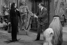 Morticia Addams is the spooky mama of the Addams Family; played by Carolyn Jones in the ' 60s sitcom that paired creepy, gothic sensibilities with a sense of humour. Description from stephaniefereiro.com. I searched for this on bing.com/images