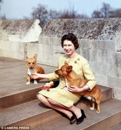 The Queen pictured in 1962 with her pet corgis in the garden of Windsor Castle.