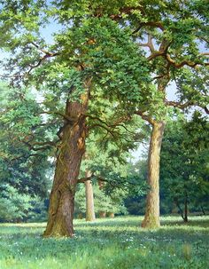 Kirichenko Gennadiy painting (oil) #tree #art