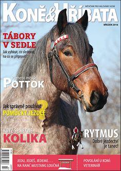 Březen 2016 Equestrian, Mustang, Magazines, Blues, Horses, Animals, Journals, Mustangs, Animales