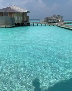 410 Best Maldives Images In 2020 Maldives Vacation Spots