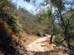 Hiking in San Diego - Elfin Forest Recreational Reserve-watch out for rattlesnakes!