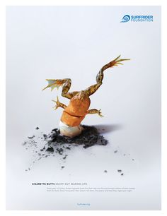 Print advertisment created by Gyro, United States for Surfrider Foundation, within the category: Public Interest, NGO.