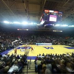 Alaska Airlines Arena at Game Time!