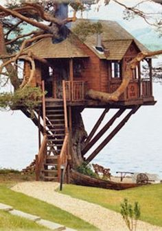 How To Build A Treehouse ? This Tree House Design Ideas For Adult and Kids, Simple and easy. can also be used as a place (to live in), Amazing Tiny treehouse kids, Architecture Modern Luxury treehouse interior cozy Backyard Small treehouse masters Unusual Wedding Venues, Quirky Wedding, Cool Tree Houses, Tree House Designs, Unusual Homes, In The Tree, Play Houses, Cave Houses, My Dream Home