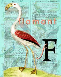 F for FLAMANT.Alphabet Ornithology Decor par BerniesArtPrints