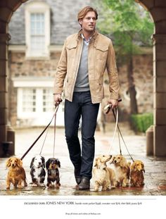 A cute man with six dachsies