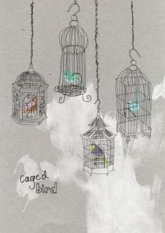 Caged Birds by Tabitha Emma