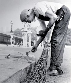 street sweeper feeding a sparrow ~ Photo by Alisdair Macdonald