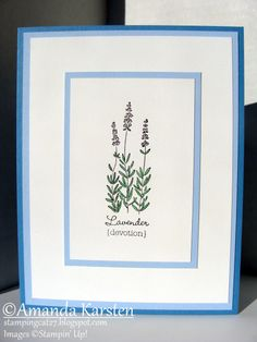 Herb Expressions - Lavender by Hauntedradio - Cards and Paper Crafts at Splitcoaststampers