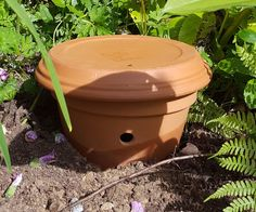 In wanting to keep more than just Honey Bees, and Mason Bees. I found myself wanting to help the Bumble Bees as well. So I used some cheap Terracotta pots I had laying around.