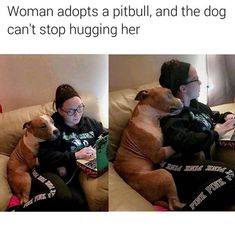 Uplifting So You Want A American Pit Bull Terrier Ideas. Fabulous So You Want A American Pit Bull Terrier Ideas. Cute Funny Animals, Funny Animal Pictures, Cute Baby Animals, Funny Cute, Funny Dogs, Animals And Pets, I Love Dogs, Puppy Love, Cute Puppies