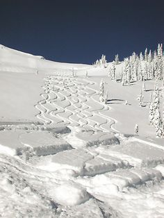 Heli skiing In B.C.