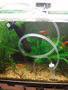 Have you ever vacuumed your tank and run out of water before you run out of crud? DIY powered gravel vac from old fish tank parts