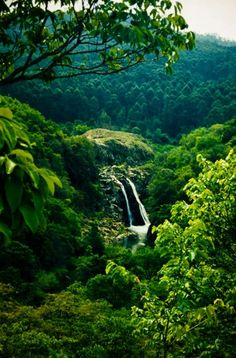 Mantegna Falls, Kingdom of Swaziland   We live within walking distance of this double waterfall