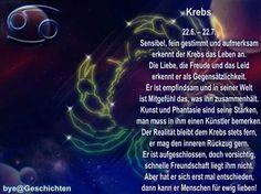 Krebs