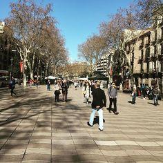 """""""🔸La Rambla est une avenue emblématique de Barcelone qui relie la place de Catalogne (plaça Catalunya), centre névralgique de la ville, au vieux port (port Vell) où se dresse la colonne de Christophe Colomb. 🔸Tout au long de La Rambla on trouve, outre des terrasses de restaurants, une multitude d'artistes de rue, musiciens 🎺, danseurs 💃🏼 🕺🏻 peintres 🖼, clowns 🤡,mais aussi des marchands d'oiseaux 🦅, de journaux 📰, de fleurs 🌺, entre autres et pour le plus grand plaisir des très…"""