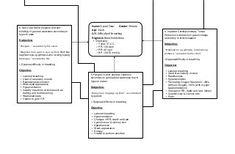 Nursing care plans, concept map bronhial asthma | BNS ...