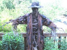 I hope you don't mind but I'm going to post the picture of your incredible scarecrow here in the thread: