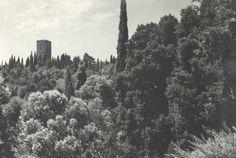 Solferino #Mantova #Mantua #arte #art #cultura #culture #Italia #Italy #amarcord