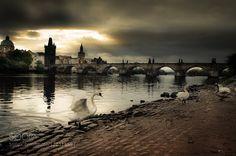 -Charles Bridge- by egyedviktor. Please Like http://fb.me/go4photos and Follow…