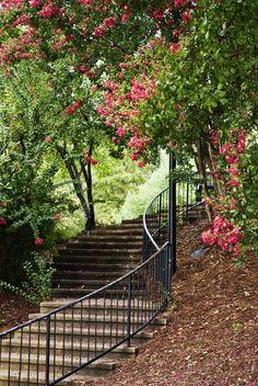 Finlay Park, Columbia, SC