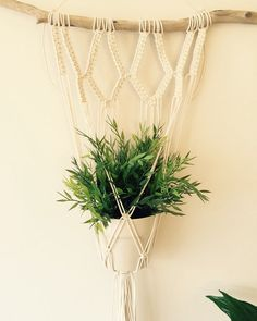 A lovingly handmade macrame plant hanger for your beloved plants! This driftwood measures 58cm, macrame approx 30cm at widest point by 120cm long.  Please note this plant hanger is made to order so the driftwood may vary. I will do my very best to find a piece similar to the picture above.  Other designs and options are available, please see other listings or contact me with a custom request. Thank you.