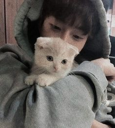 Pinterest: us.nilep Cute Asian Guys, Cute Korean Boys, Asian Boys, Cute Guys, Korean Boys Ulzzang, Ulzzang Couple, Ulzzang Boy, Boy Cat, Cute Gay Couples