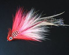classic red and white musky fly