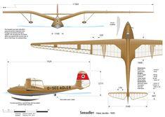kranich glider | DFS Sperber Junior | Planes - Gliders - Views | Pinterest