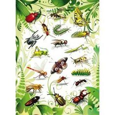 10 x HERMA Sticker Magic Insekten 2D Folie VE=1 Blatt
