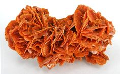 17.4 x 9.5 x 7.6 cm. This is one of the larger wulfenite specimens of high quality, preserved from several seasons of digging in the remote mountainous region of this northern Chinese autonomous zone. This specimen resembles San Francisco Mine wulfenite in style, but with a red color more similar to Red Cloud mine material. Multiple styles were produced from this mine over the course of 2-3 years, and all were released to market recently as a lot which reflects this period of mining many…