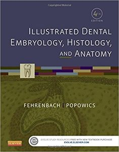 Netters head and neck anatomy for dentistry by neil s n test bank illustrated dental embryology histology and anatomy 4th edition fehrenbach fandeluxe Images