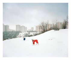 Alexander Gronsky, The Edge, Moscow boundaries, Russia, 2009. Greyhounds dressed in winter gear :) Cute.