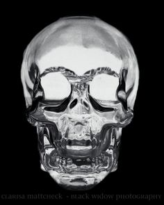 Crystal Head Vodka bottle - this is what I call being 'bold and creative'.