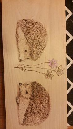 Hedgehog burning