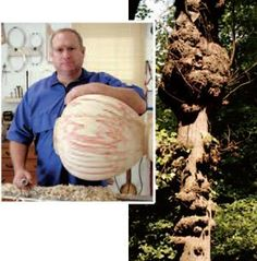 Burls—those odd, bulbous growths on trees that result from an injury or disease—hold hidden treasures of exotic figure beneath their haunting exteriors.