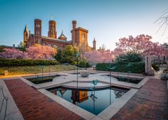 Smithsonian Enid A. Haupt Garden in Washington DC (Photo Guide) Pictures Of Washington Dc, Dc Capital, Moon Gate, Magnolia Flower, Blooming Flowers, Castle, Mansions, House Styles, Maryland