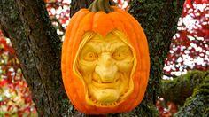 10 Ways to Celebrate Halloween on Mercer Island