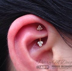 perrymdoig: Gold; it does a body good. Rook piercing by yours truly, performed at Rose Gold's in San Francisco, CA. Jewelry by Body Vision Los Angeles