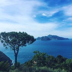 #capri #island today as seen from #amalfi #sorrento #coast astonishing! I've travelled a lot but this is still one if my favorite spot on the #planet and it's my own land...how luky... #italy #italia #campania #napoli #wonderful_places #amazing #serenity #instagood #picoftheday #travel #nature by jacopogallotti