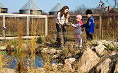Chicagoland Environmental Network - Ebvuribnebtak Jobs and Internships around the Chicago region.