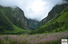 Valley of Treks, Trek the himalayas Trek The Himalayas, Valley Of Flowers, Adventure Travel, National Parks, Mountains, Adventure Trips, Bergen