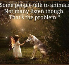 "Quotes:  ""Some people talk to animals. Not many listen, though. That's the problem."""