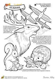 Dessin à colorier un automne de rêve, les animaux - Hugolescargot.com