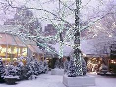 A winter wonderland, New York's gone but not forgotten Tavern on the Green, Central Park West. Life Is Beautiful, Beautiful Places, Tavern On The Green, Central Park Nyc, I Love Winter, Its Cold Outside, Time Of The Year, Winter Wonderland, New York City