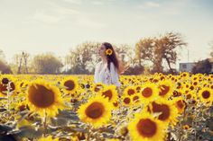 autumn sunflowers photography model sun beauty